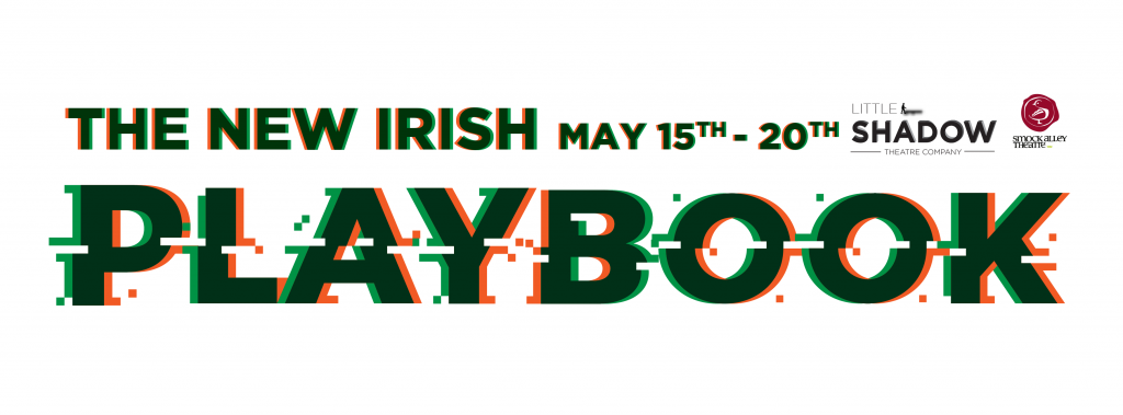 The-New-Irish-Playbook-Cover-02-1024x379