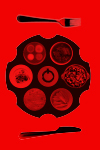 SMF_SA_Thumbnail_100x150px_26.04.16_12.06